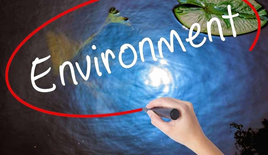 10 empresas españolas entre las mejores en transparencia y medioambiente
